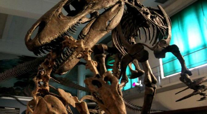 Dinosaur paleontology in Danger of Extinction: Tuesday, August 27, 2019